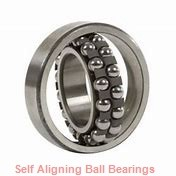 NTN 2313K  Self Aligning Ball Bearings