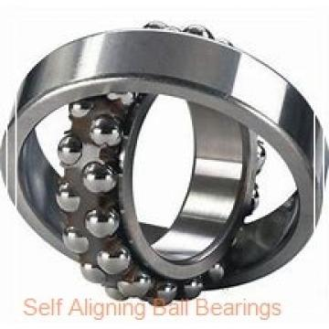 NSK 2313KTN  Self Aligning Ball Bearings